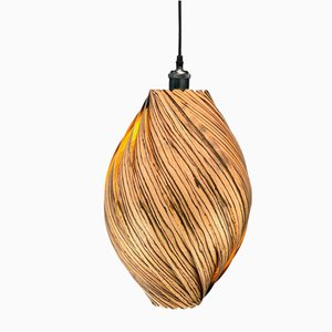 Ardere Zebrano Pendant Lamp by Gofurnit