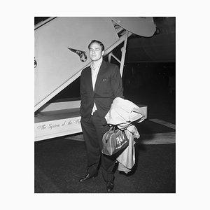 Marlon Brando Archivdruck in Schwarz von Bettmann