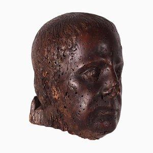 Sculpture of Wooden Shell