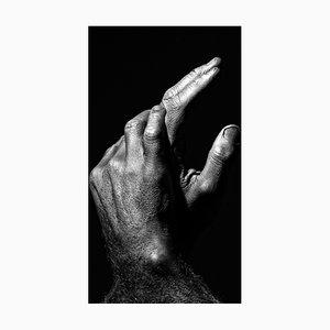 Rebirth, Photograph by Eurivaldo Bezerra, 2020