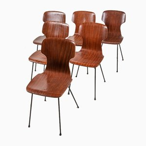 Chairs in Curved Wooden Design, 1950s, Set of 6