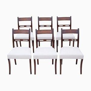 Mahogany Dining Chairs, 19th Century, Set of 6