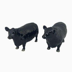 Beswick Aberdeen Angus Bull & Cow