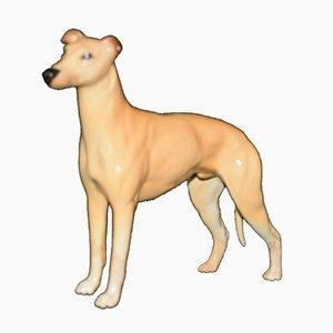 Model 972 Beswick Dog Greyhound Jovial Roger