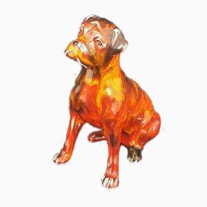 Boxer Dog by Anita Harris