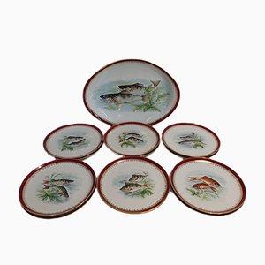 Limoges Porcelain Fish Service by Bernardaud, Set of 13