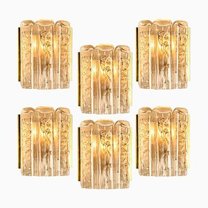 Glass and Brass Wall Sconce by Doria, 1960