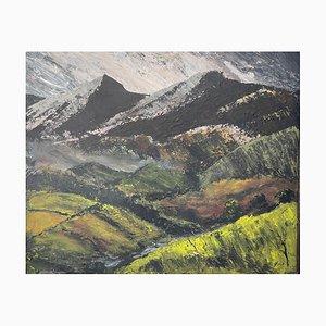 Harry Fogg, The Beacons, Pittura ad olio di paesaggio contemporaneo, 2000