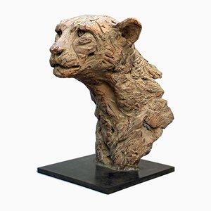 Cheetah Head by Isabelle Carabantes