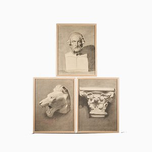 Unknown, Drawings of Lion's Head, Pencil on Paper, 19th-Century, Set of 3
