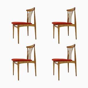 Mid-Century Organic Beech Dining Chairs, 1960s, Set of 4