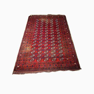 Antique Middle Eastern Red Carpet