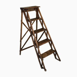 Louis Philippe Stepladder with 5 Steps in Walnut