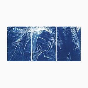 Botanical Triptych of Shady Majesty Palm Leaves Garden, Blue Tones Cyanotype, 2021