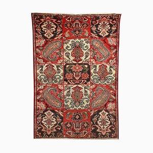 Middle Eastern Wool Rug
