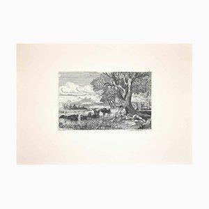 Carlo Coleman, Shepherds with Buffalo, Original Etching, 1992