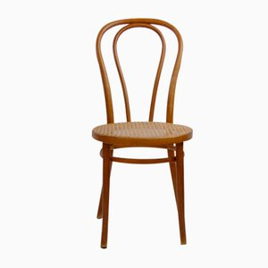 Bent Beech A18 / 14 Chair from Thonet / Italcomma-Pesaro, 1850s