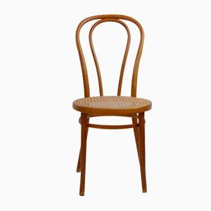 Gebogener A18 / 14 Stuhl aus Buche von Thonet / Italcomma-Pesaro, 1850er