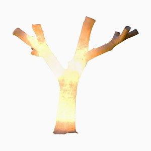 Sculpture Lumineuse No Leafs par Atelier Haute Cuisine