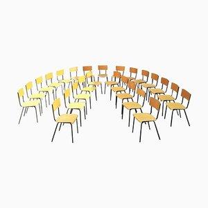 Mid-Century Italian Beech Desk Chairs, 1960s, Set of 20