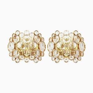 Wandleuchten aus vergoldetem Messing & Kristallglas von Sciolari für Palwa, 1960er, 2er Set