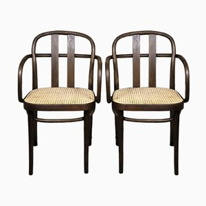 Bugholz Stühle von Thonet, Rumänien, Frühes 20. Jh., 2er Set