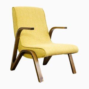 Konkav Sessel von Paul Bode für Deutsche Federholzgesellschaft, 1950er