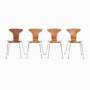 Mosquito 3105 Model Chairs in Teak by Arne Jacobsen for Fritz Hansen, Set of 4