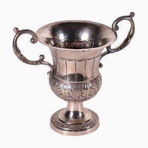 Silver Vase Cup