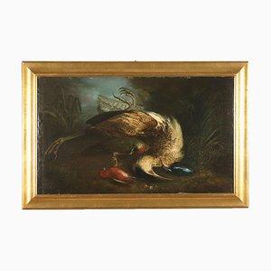 Natura Morta con Cacciagione, Oil on Canvas