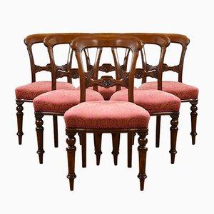 Viktorianische Esszimmerstühle aus Mahagoni, 6er Set