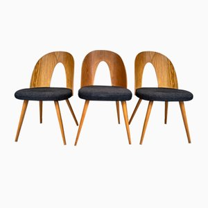 Mid-Century Dining Chairs in New Fabric by Antonin Šuman for Tatra, Set of 3