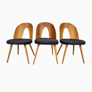 Mid-Century Esszimmerstühle in New Fabric von Antonin Šuman für Tatra, 3er Set