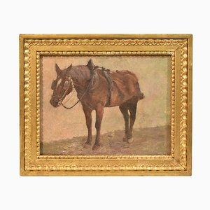 Pintura de paisaje y caballo, siglo XIX, óleo sobre lienzo