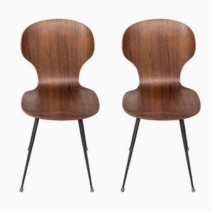 Lulli Stühle von Carlo Ratti, 2er Set