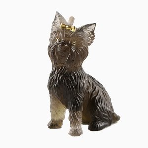 Miniature Yorkshire Terrier in Stone