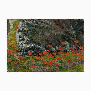 Crimea, Poppies in Stones, V. A. Polyakov