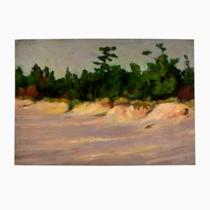 Ansis Stunda, Study of Dunes
