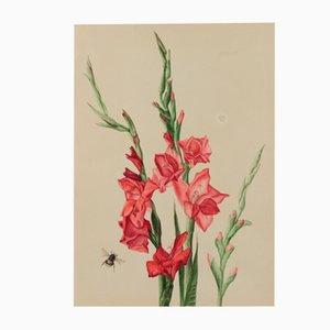 Acuarela de la abeja y los gladiolos de Burghardt