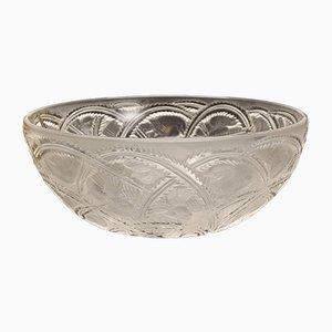 Kristallglas Schale mit Schwalben Dekoration von Lalique