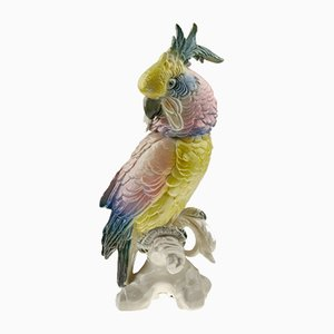Pinker Papagei von Karl Ens