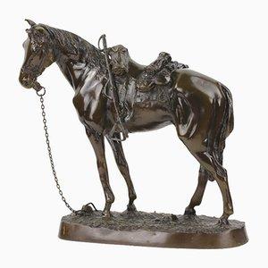 Bronze Sculpture of Stallion