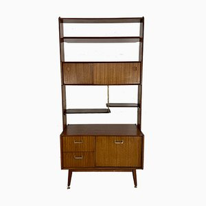 Vintage Wall Unit and Room Divider from G-Plan