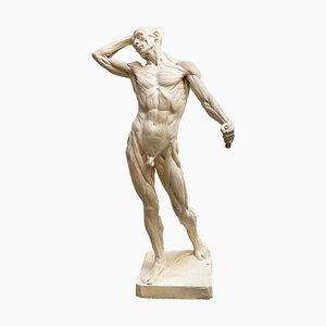 Echorchè Man, Skulptur aus Harz von Edouard Lanteri
