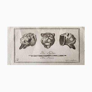 Verschiedene Alte Meister, Tierfiguren, Original Radierung, 1750er