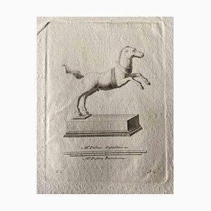 Artisti vari, figure di animali dell'antica Roma, acquaforte originale, anni '50