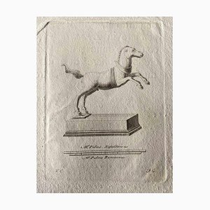 Various Artists, Animal Figures from Ancient Rome, Original Etching, 1750s