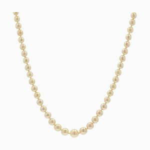 French Golden Falling Cultured Pearl Necklace, 1950s