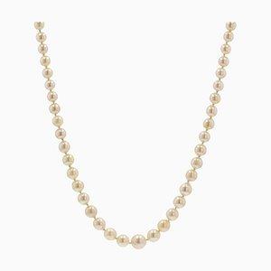 Französische Sahnezuchtperle Halskette