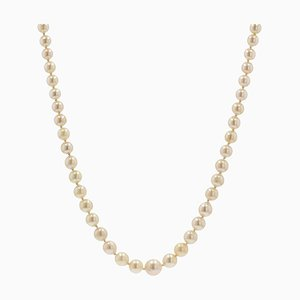 French Cream Cultured Pearl Falling Necklace